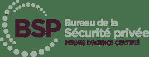 Logo BSP
